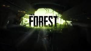 The Forest Gameserver